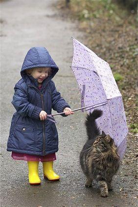 お気遣いなく・・姫が濡れますよ.jpg