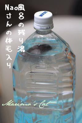 m_1102-c-498e0.jpg